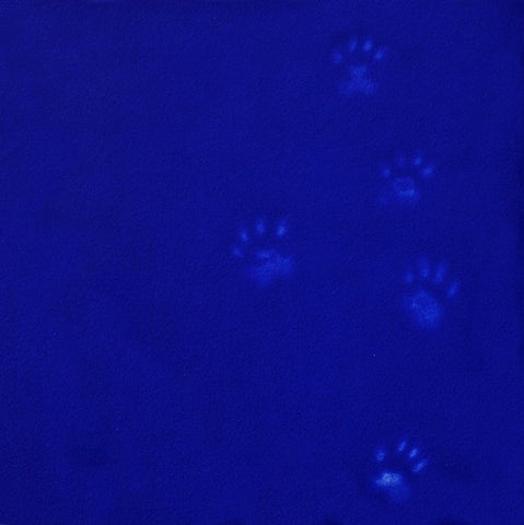 Yves Klein's Cat (framed)