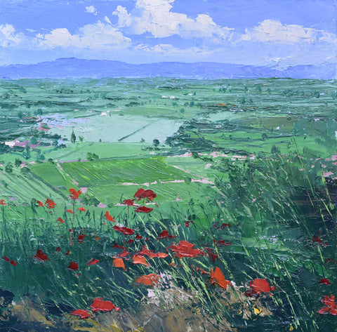 Poppies, Gordes
