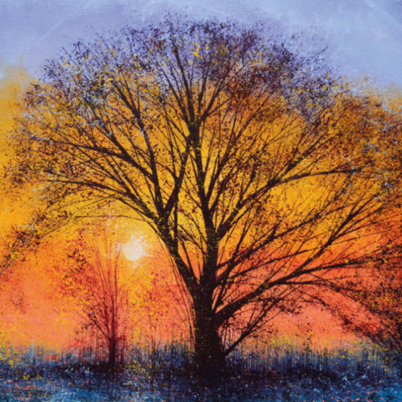 The Big Tree at Sunset (card)