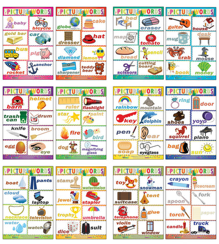 Picture Words Learning Posters (24-Pack)