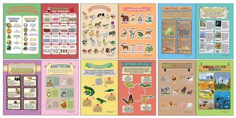 Creanoso Learning Posters - Animals - Fun and Encouraging Homeschool Gift Ideas for Students, Children, Teachers & Adults