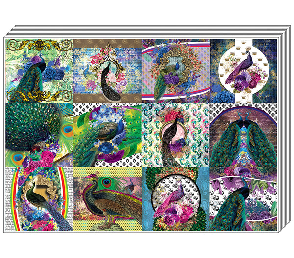 Creanoso Peacock Stickers - Premium Quality Gift Sets Assorted Designs for Children - Classroom Reward Incentives for Students