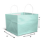Cake bag for 1kg - Mint - Small - 8x8x8""