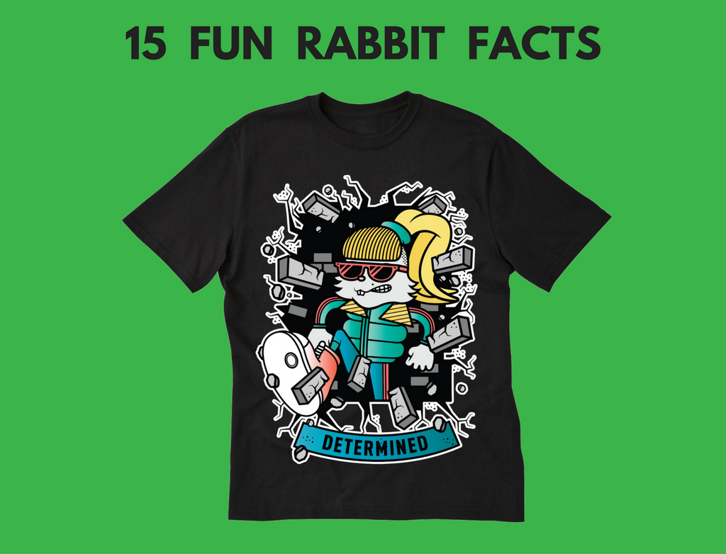 15 Fun Rabbit Facts for Kids