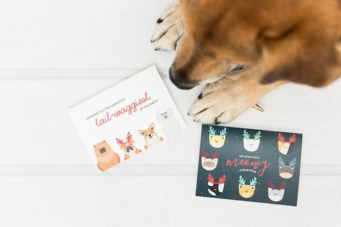 Our Cards in Support of the SPCA