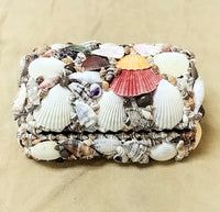 "Multi Color Shell Treasure Chest 7""x 5""x 3.5"""