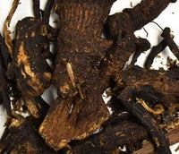 Osha Root Poteri  (dried 1 oz)