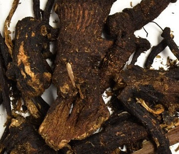 Osha Root (dried 1 oz)