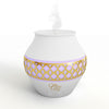 Rainbow Mist Aromatherapy Ultrasonic Diffuser by Ovvio Oils (120 ml)