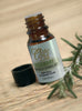Rosemary Oil By Ovvio | 100% Pure Essential Oil from Spain | Large 15ml