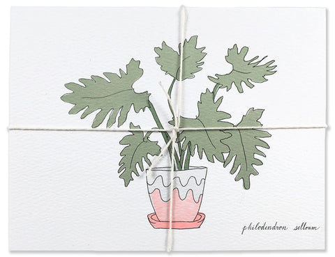 12 house plant postcard pack with philodendron plant tied up illustrated by Hartland Brooklyn.