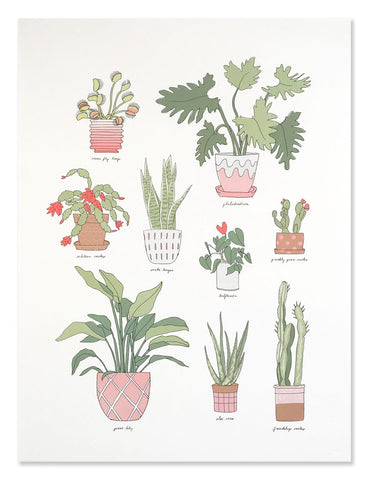 Houseplants art print illustrated by Hartland Brooklyn.