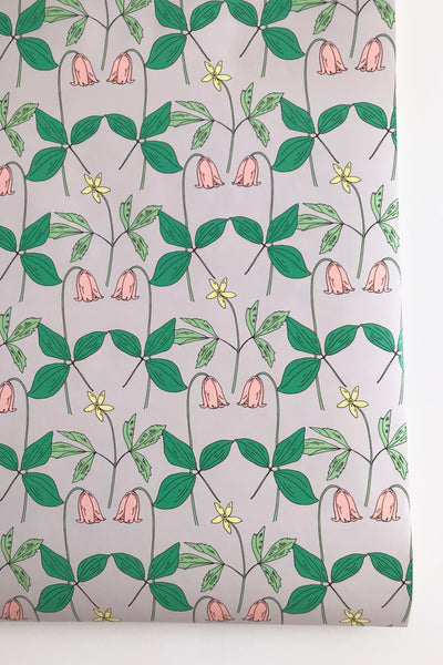 Tulip Grey and Pink Wallpaper