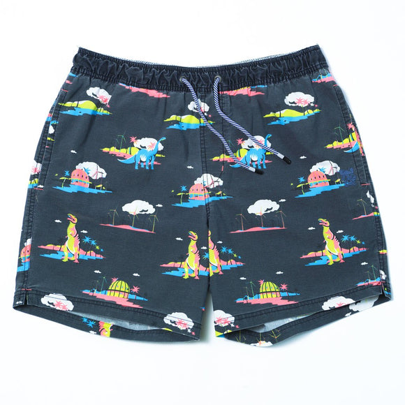 Coachella Magnet Swim Shorts