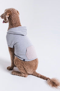 Doggy Striped Hoodie