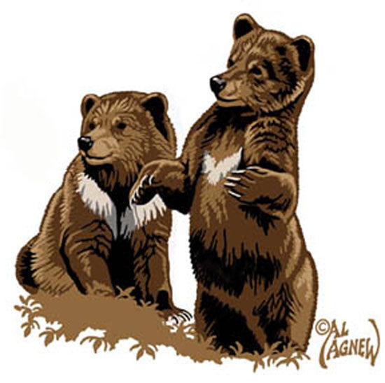 fbed42363 Bear Cubs Embroidered Baby Blanket by Al Agnew© – Woven Art   Beyond LLC