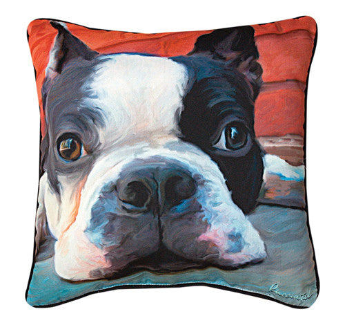 Moxley Boston Terrier Pillow by Robert McClintock -