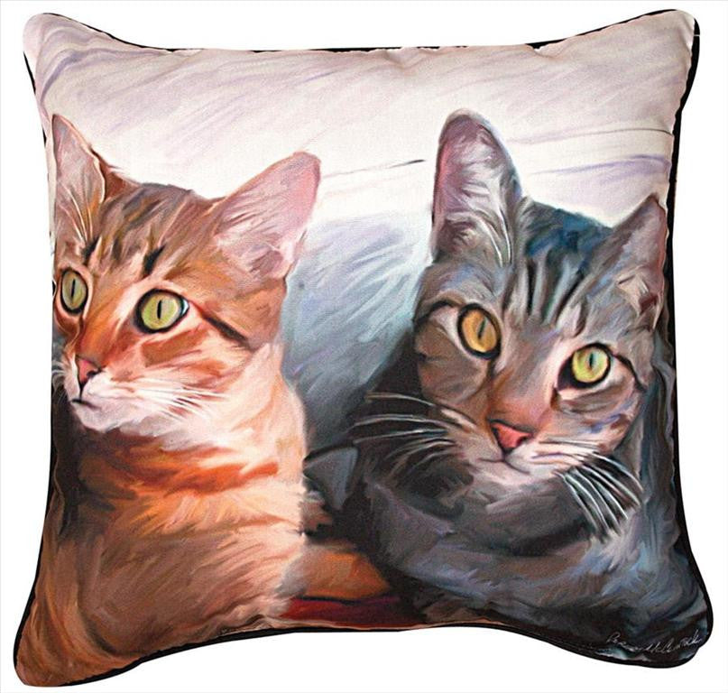 Sweepo and Tony Pillow by Robert McClintock© -