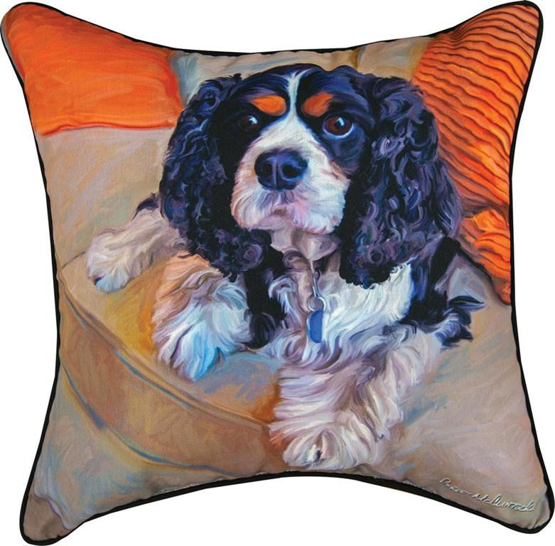 Charles In Charge Pillow by Robert McClintock©
