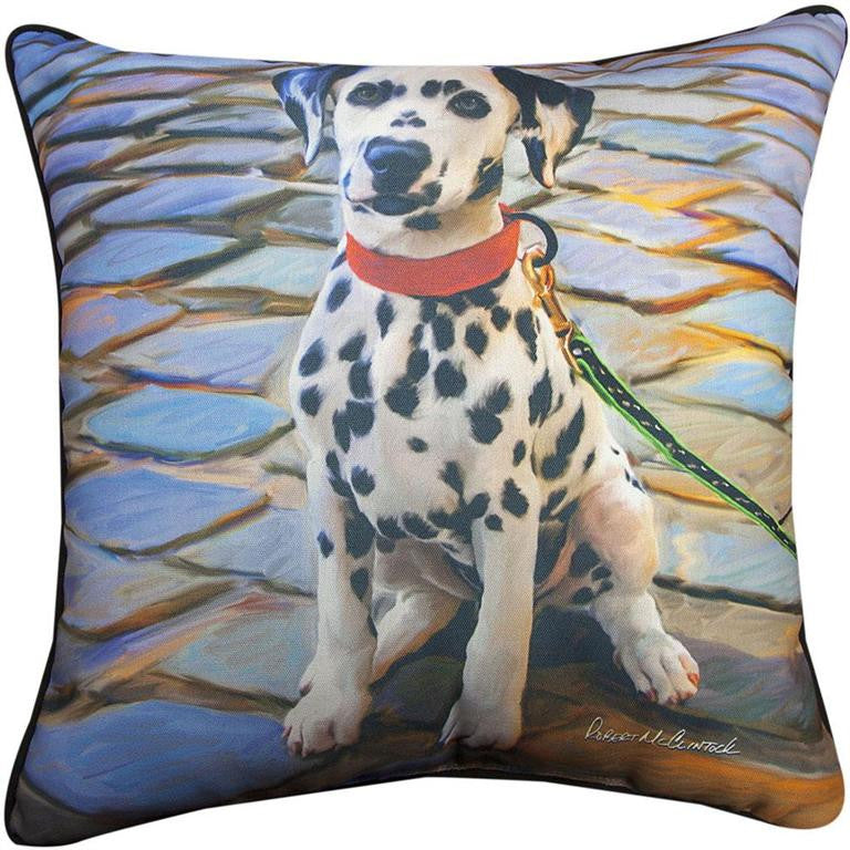 Dalmation Pillow by Robert McClintock©