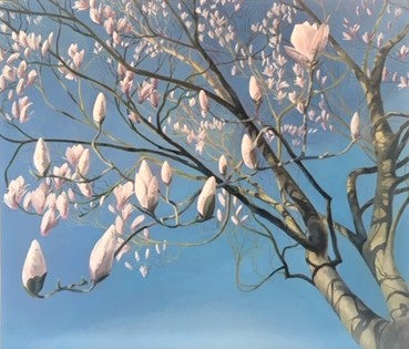 Magnolias, First Sign of Spring