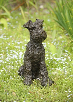 Parsley (Welsh Terrier)