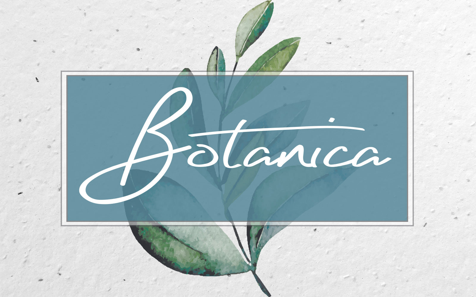 Plantable wedding stationery - Botanica