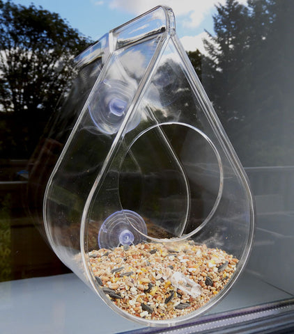 Petit Pod bird window feeder