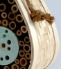 Petit Pod eco-friendly bee & bug house
