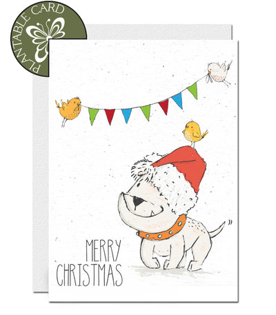 plantable card merry Christmas