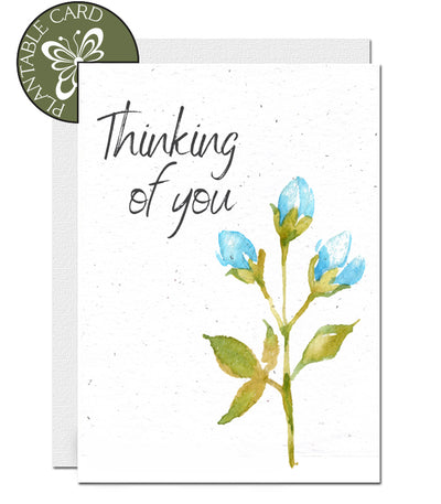 plantable card condolence thinking of you