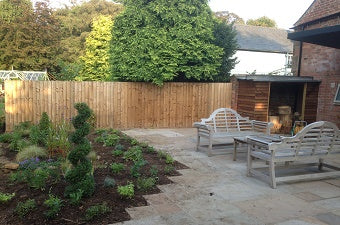 Herbaceous and Shrubs