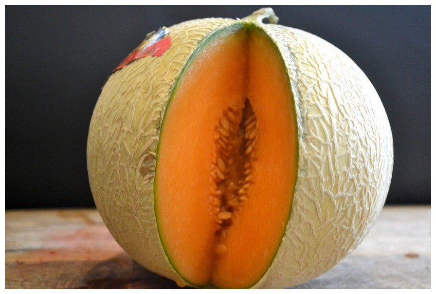 Spanish Charentais Melon