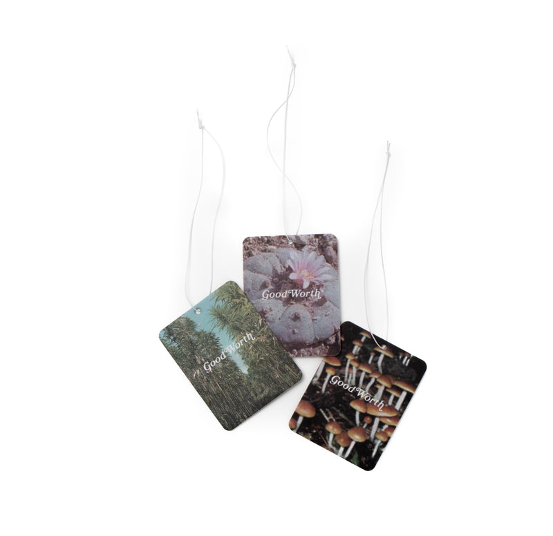 Peace Plants Air Freshener Pack
