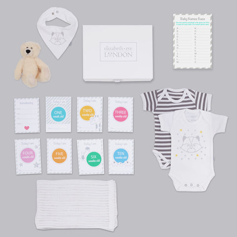baby shower gift box with milestone cards