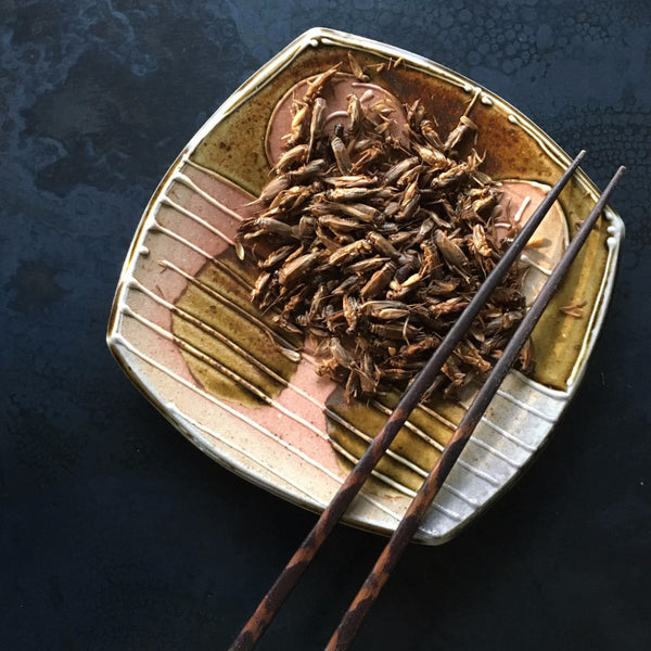 Aketta Whole Roasted Crickets