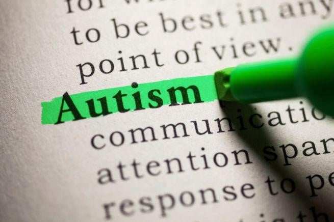 Medical Cannabis and Autism: has Science made any progress?