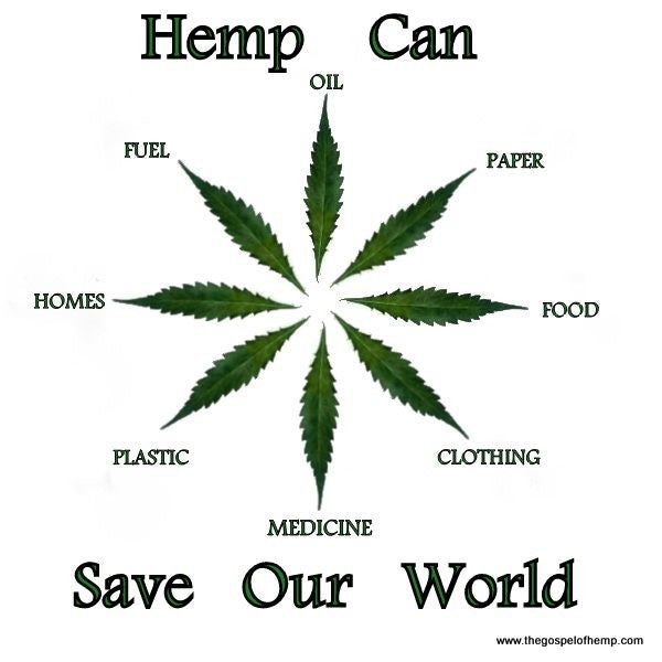 Hemp,  the Holistic Plant for an Eco-Sustainable World