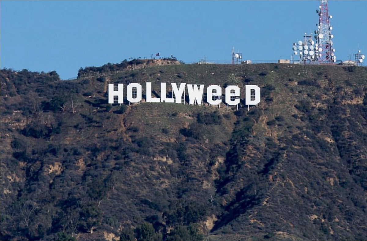 Cannabis Legale: Hollywood diventa Hollyweed