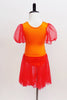 Bright orange leotard has red sheer sleeves &  red sheer  skirt. The bodice had red & gold painted leaf accents  from shoulder to front center pinch front. Back