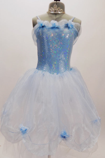 Pale blue dotted bodice has layers of white tulle, pale blue organza overlay with roses & a long  organza sash that extends down the back.  Comes with tiara. Front