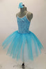 Aqua-blue velvet camisole leotard has silver piping and a glittery crackle pattern. Comes with aqua & white romantic pull-on tutu skirt & rose hair accessory. Left Side