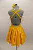 Yellow, halter leotard dress has cross straps and low back. The wide waistband separates bust area & skirt with tulle underlay. Comes with rose hair accessory. Back