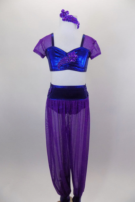 Two-piece costume has purple glitter mesh harem pants with blue waistband & ankle cuffs. The matching top is blue with purple cap sleeves. Comes with hair piece. Front