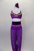 Purple Arabian two-piece costume has mesh harem pants, built-in panty, velvet waistband & gold jeweled applique at waist. Velvet bra has marching gold applique. Comes with hair accessory. Front