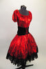 2-piece costume is a shimmery red with pouf sleeves & gathered bodice, accompanied by a matching skirt with layers of black tulle and black velvet corset belt. Comes with matching kerchief. Right side