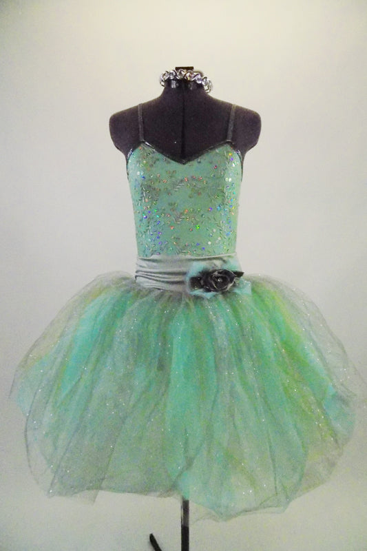 Pale mint and silver romantic tutu dress has delicate sequined bodice & layers of crystal tulle in aqua, silver & gold. Has wide silver waistband with flower. Comes with jeweled hair band. Front