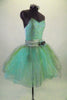 Pale mint and silver romantic tutu dress has delicate sequined bodice & layers of crystal tulle in aqua, silver & gold. Has wide silver waistband with flower. Comes with jeweled hair band. Right side