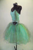 Pale mint and silver romantic tutu dress has delicate sequined bodice & layers of crystal tulle in aqua, silver & gold. Has wide silver waistband with flower. Comes with jeweled hair band. Left side