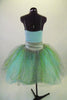 Pale mint and silver romantic tutu dress has delicate sequined bodice & layers of crystal tulle in aqua, silver & gold. Has wide silver waistband with flower. Comes with jeweled hair band. Back